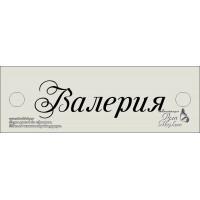 Шильд Серебро на заказ РАЗМЕР: 4х 1,5 см